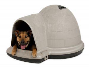 Indigo Igloo Dog Kennel