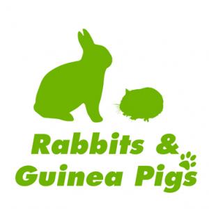 RABBITS & GUINEA PIGS