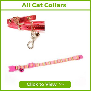 SEE ALL OUR CAT COLLARS