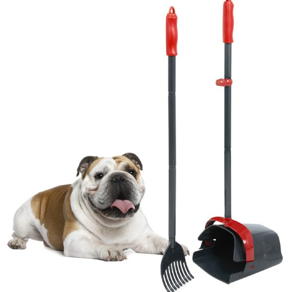 Clean Response Dog Litter Set