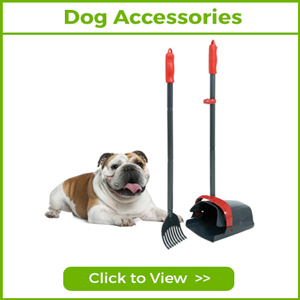 ACCESSORIES FOR DOGS