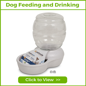 DOG FEEDING AND DRINKING