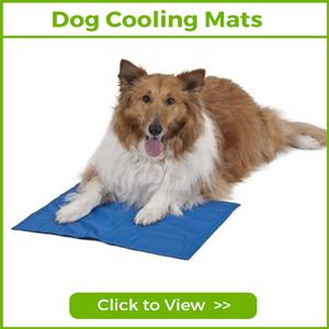 DOG COOLING MATS