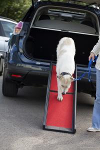 Lightweight Folding Dog Ramp