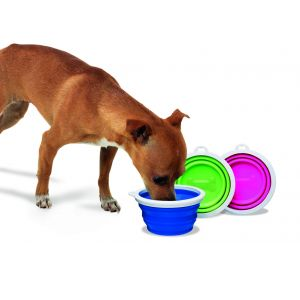 Silicone Travel Pet Bowl