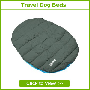 travel dog beds