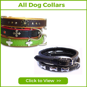 SEE ALL OUR DOG COLLARS