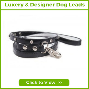 LUXURY & DESIGNER DOG LEADS