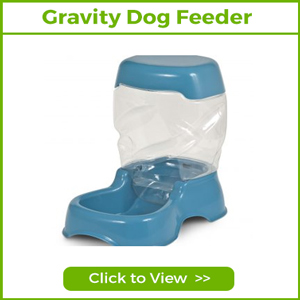 GRAVITY FEEDERS & WATERERS FOR DOGS