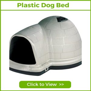 plastic dog beds