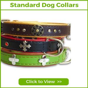 STANDARD DOG COLLARS