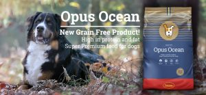 OPUS OCEAN SALMON AND POTATO