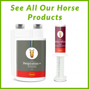 See All Our Horse Products