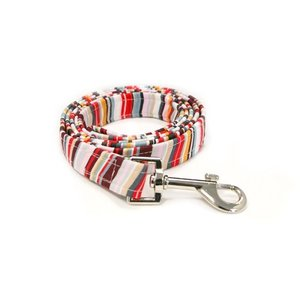 STRIPE RAINBOW DOG LEAD