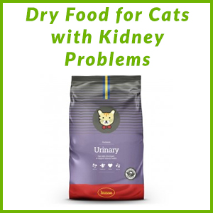 HUSSE DRY FOODS FOR CATS WITH KIDNEY PROBLEMS