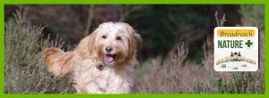 BROADREACH NATURE FOR DOGS
